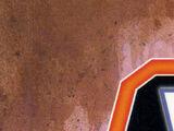 Star Wars: X-Wing Rogue Squadron: The Warrior Princess (TPB)