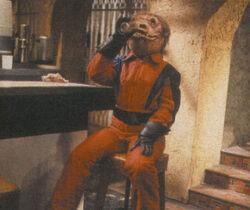 Hyst drinking