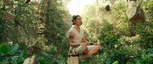 Rey meditációja
