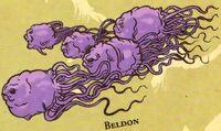 Beldons SWGA