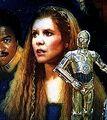 Leia-Shieldofliescover.jpg