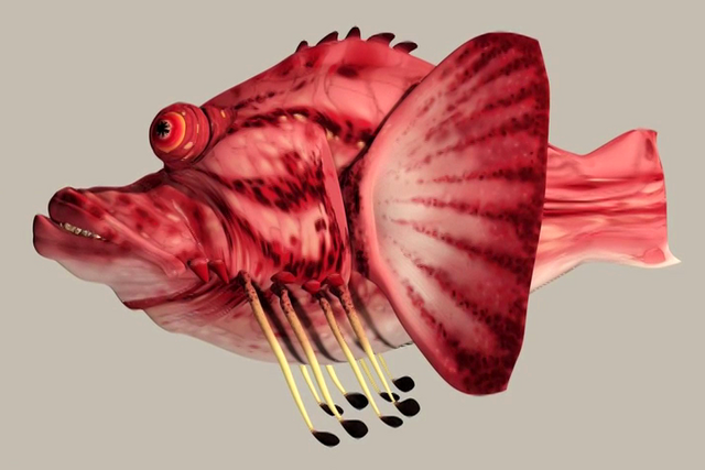 File:Tee scalefish.png