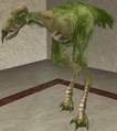 Carrionspat.png