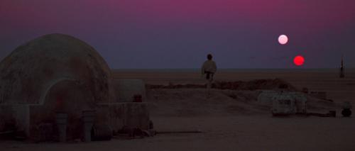 TLJ sunset