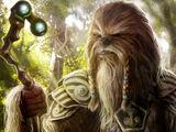 Wookiee Chieftain