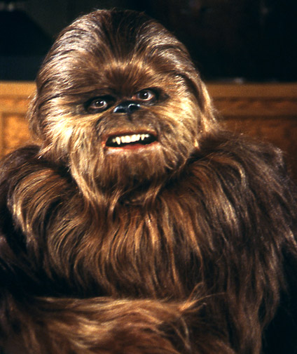 Image result for wookiee