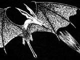 Shredder bat