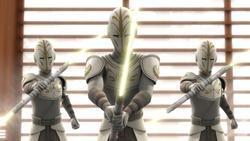 Jedi Temple Guard vision