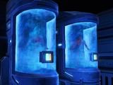 Cryogenic hibernation capsule