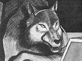 Wilk (wolf)