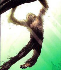 Chewbacca 004