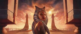 FFG-Ahsoka-leaves
