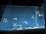 Aquarium/Legends