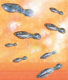 Katana fleet DFRTPB