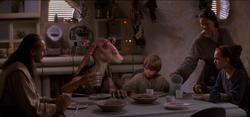 Dinner at the Skywalker home