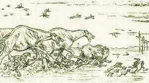 NabooCreatures