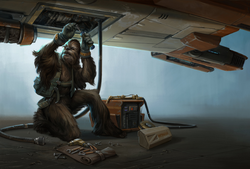 Wookiee Mechanic SM