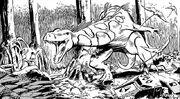 Gorsh-swamp