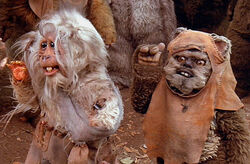 Teek and wicket