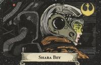 SharaBey SWGA