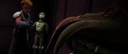 Anakin choke Poggle