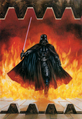 Dynamic Forces Darth Vader Print.png