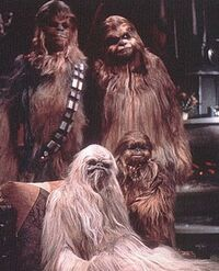 Chewie familie