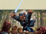 Unidentified Ewok Jedi