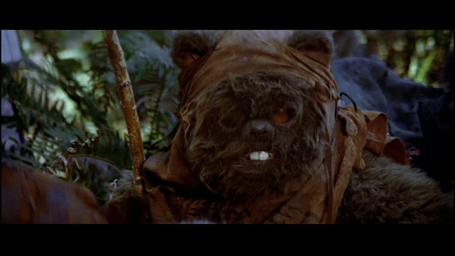 File:Another Ewok.png