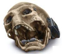 Ochis skull TROSVD
