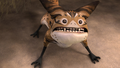 Surprised Loth-cat.png