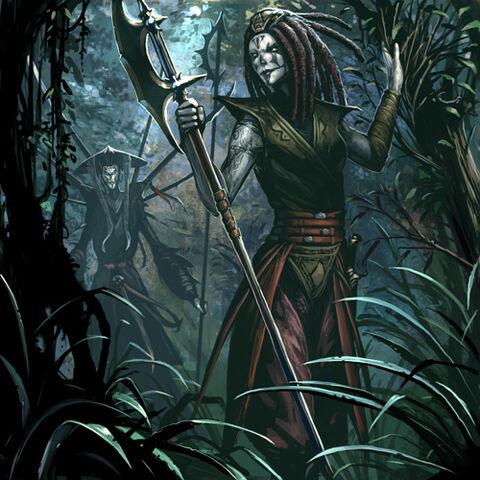 File:Nightsister Patrol Leader.jpg