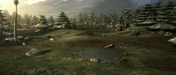 Saleiucami landscape