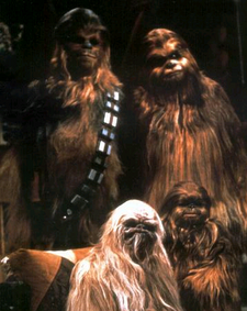 Three generations of Rwook
