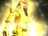 Voss healing ritual