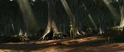 Perlote trees