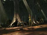 Perlote tree/Legends