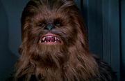 Chewie DS1