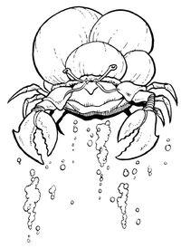 Sink-crab