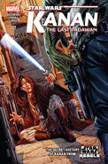 Star Wars Kanan The Last Padawan 2 cover