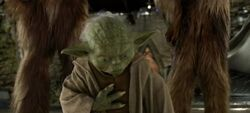 Yoda Sense Kashyyyk