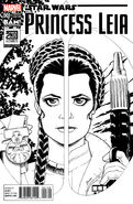 Princess Leia 1 Books A Million Amanda Conner Sketch Variant
