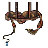 Anacondan art
