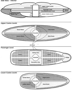 Coral Vanda