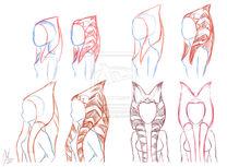 Togruta montrals and lekku studies by raikoh illust-d7k5pdn