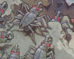 SpiderRoach