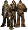 Wookiees-Transparent.png