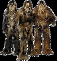 Wookiees-Transparent