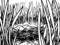 Goa lawah nest.png