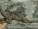 Dragonsnake